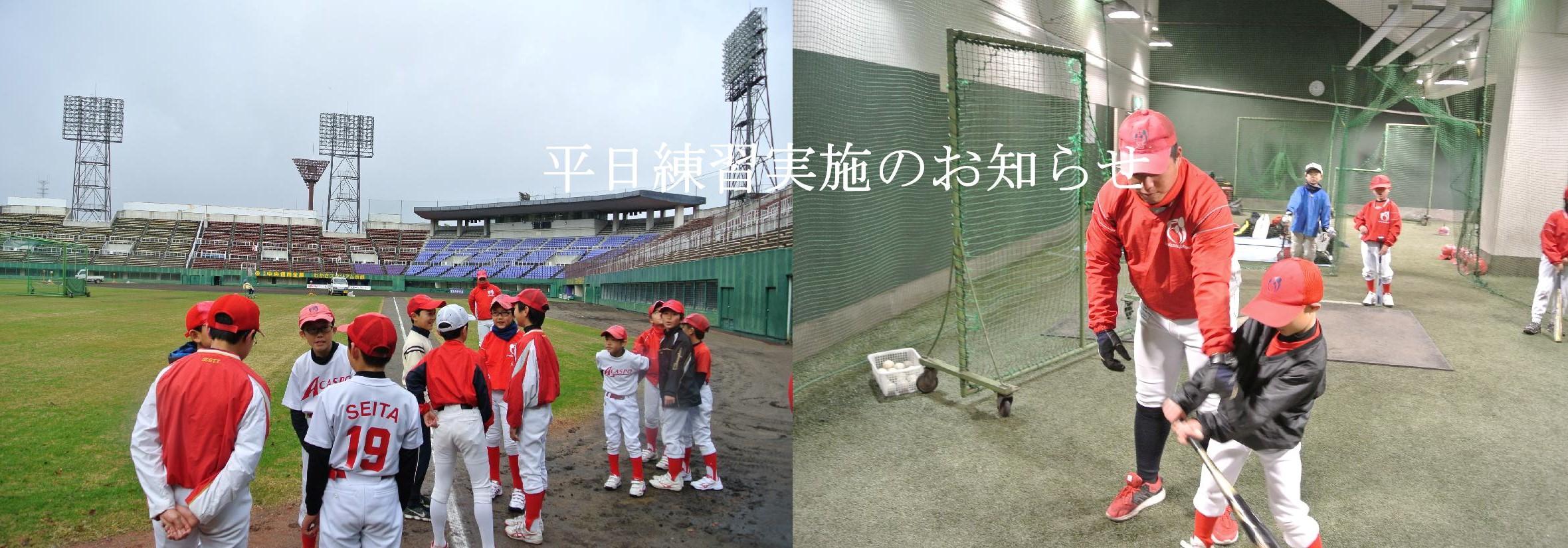 【野球S】平日夕方練習のお知らせ